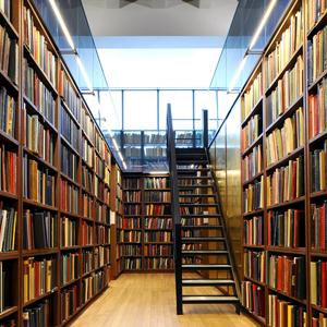 Библиотеки Чистополя