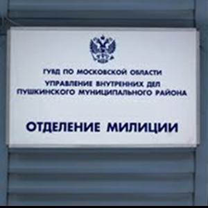 Отделения полиции Чистополя